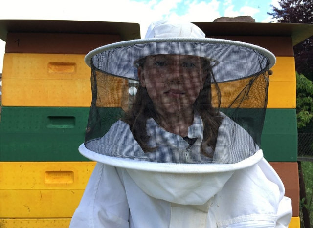 Blütenpracht - Honig aus Kassel
